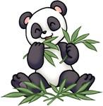 漢方養生 中国式.jpg